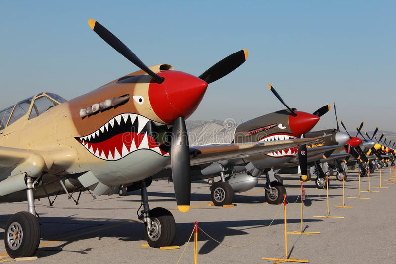 Warbird Row. Warbirds lined up for airshow royalty free stock image