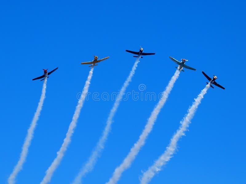 Warbirds Flyover zdjęcie royalty free