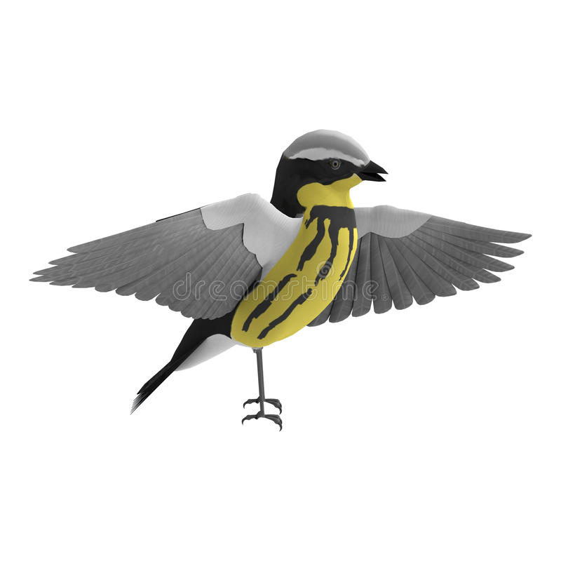 Download Warbler stock illustration. Image of small, songbirds - 34325506