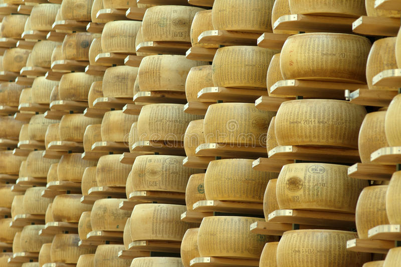 Warehouse of wheels of cheese. Lots of wheels of parmesan cheese on shelves of a storehouse stock image