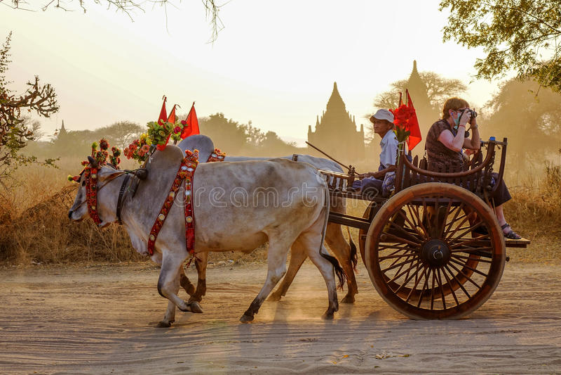 Warenkorb auf dem Weg zu Thatbyinnyu-Tempel lizenzfreie stockfotos