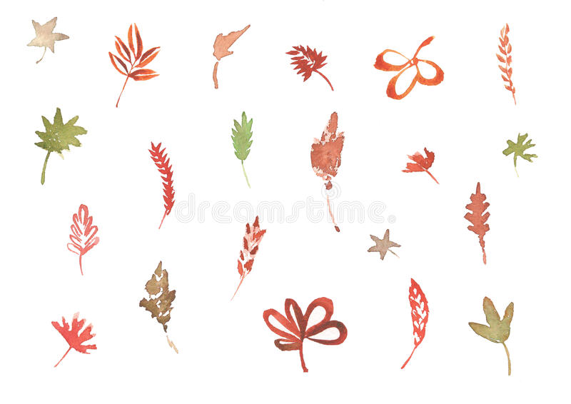 Set of different leaves, hand drawn watercolor illustration, floral stock photo
