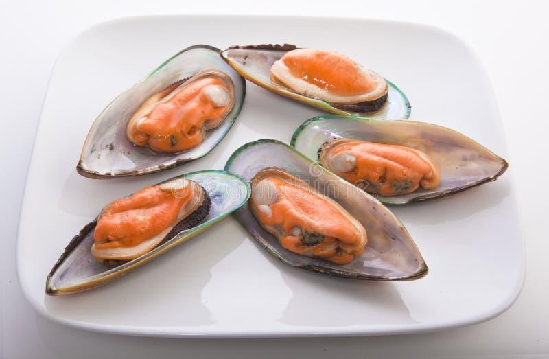 warg zieleni mussels zdjęcie royalty free