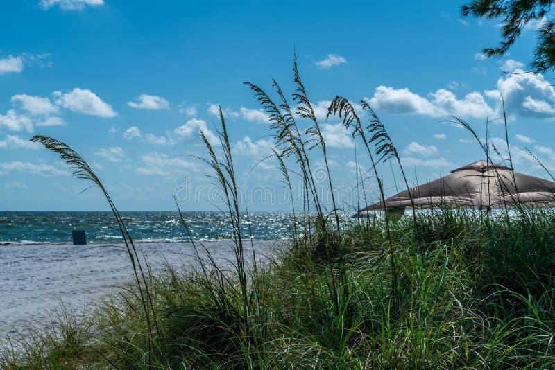 Warm and Breezy Day. A warm and breezy day at the beach on Anna Maria Island in Southwest Florida royalty free stock photo
