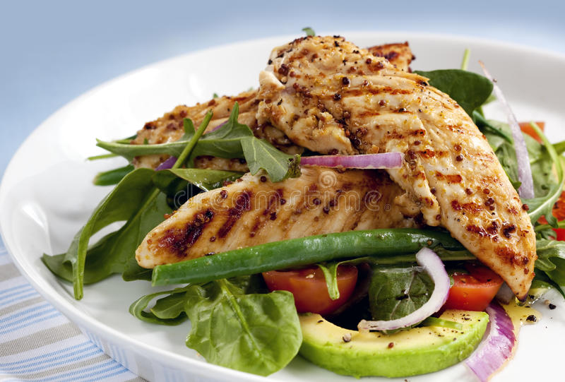Warm Chicken Salad royalty free stock photos