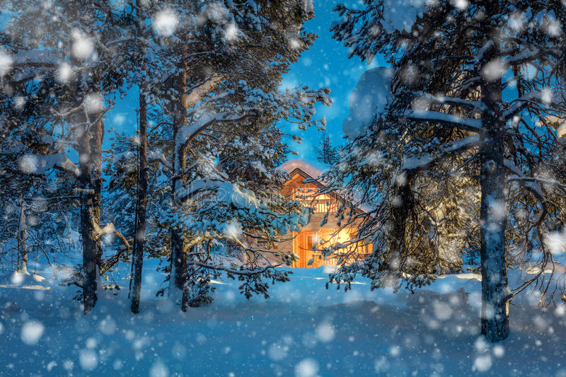 Warm house in night winter forest with snowfall stock photography