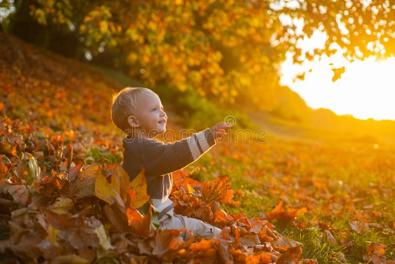 Warm moments of autumn. Toddler boy blue eyes enjoy autumn. Small baby toddler on sunny autumn day. Warmth and coziness. Happy childhood. Sweet childhood stock image