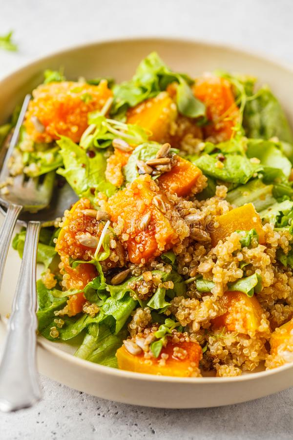 Warm quinoa and pumpkin salad in a white plate. royalty free stock images