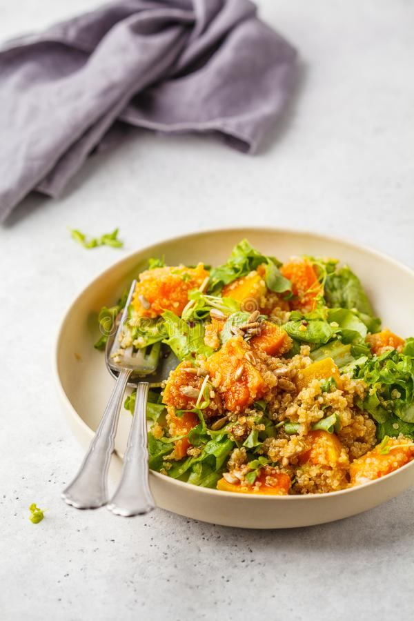 Warm quinoa and pumpkin salad in a white plate. royalty free stock image