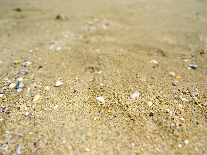 Warm sends of the Black sea. Bulgaria. Summer adventures royalty free stock images
