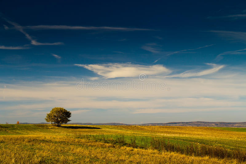 Warme Landschaft in Fagaras lizenzfreie stockfotografie