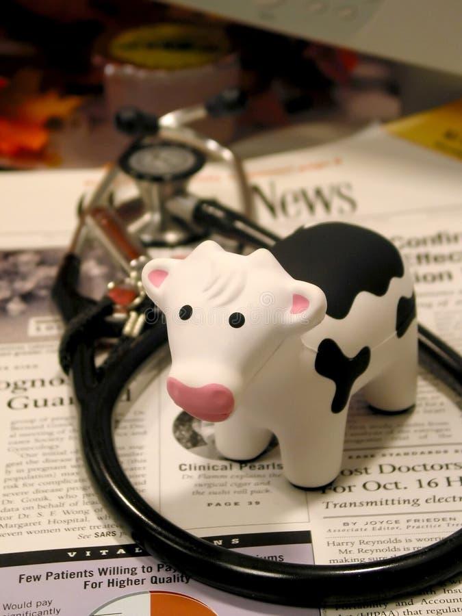 Warme Medizin lizenzfreie stockfotos