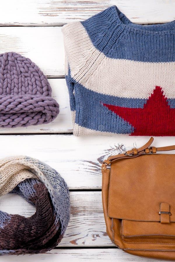 Warmer weiblicher Winterblick stockbild