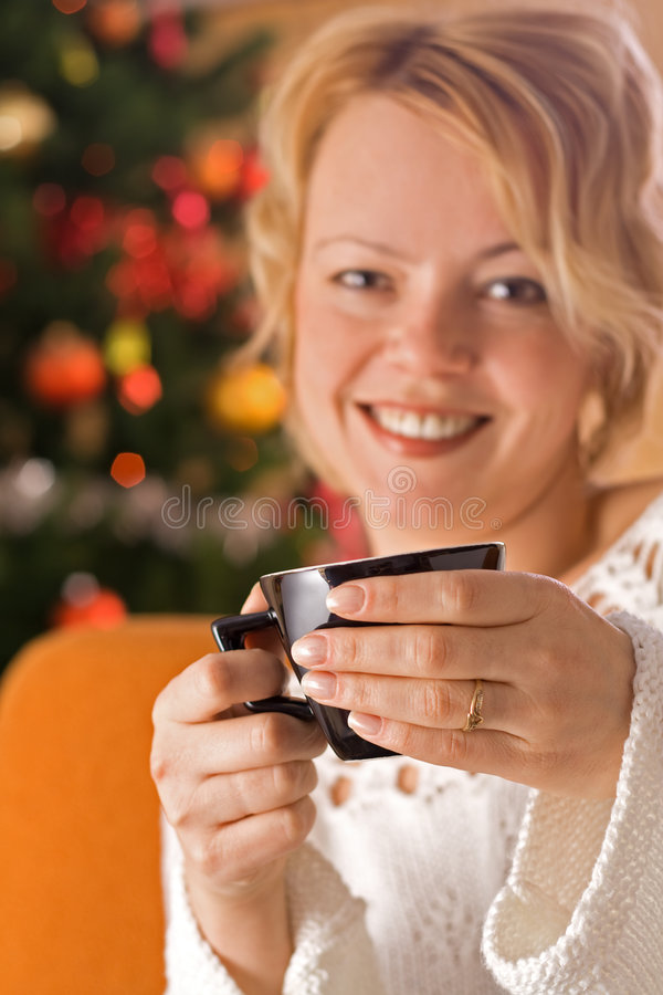 Download Warmth of holidays at home stock image. Image of woman - 3938655