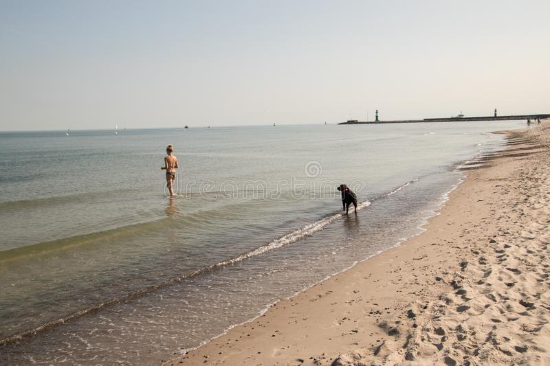 Girl in bikini playing with her dog on the beach royalty free stock photo