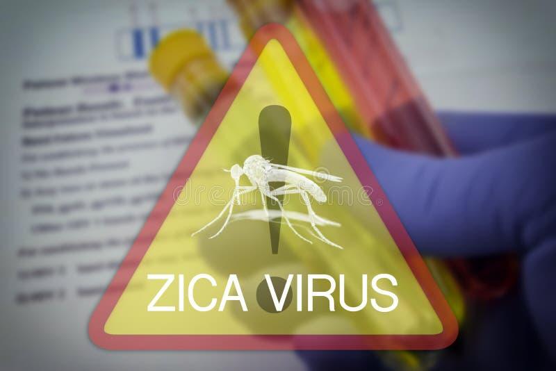 Warnendes quadratisches Zeichen Zika-Virus lizenzfreie stockfotos
