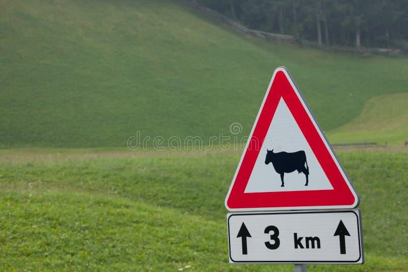 Warnendes Verkehrsschild für Tieranwesenheit lang eine italienische Gebirgsstraße stockfotos