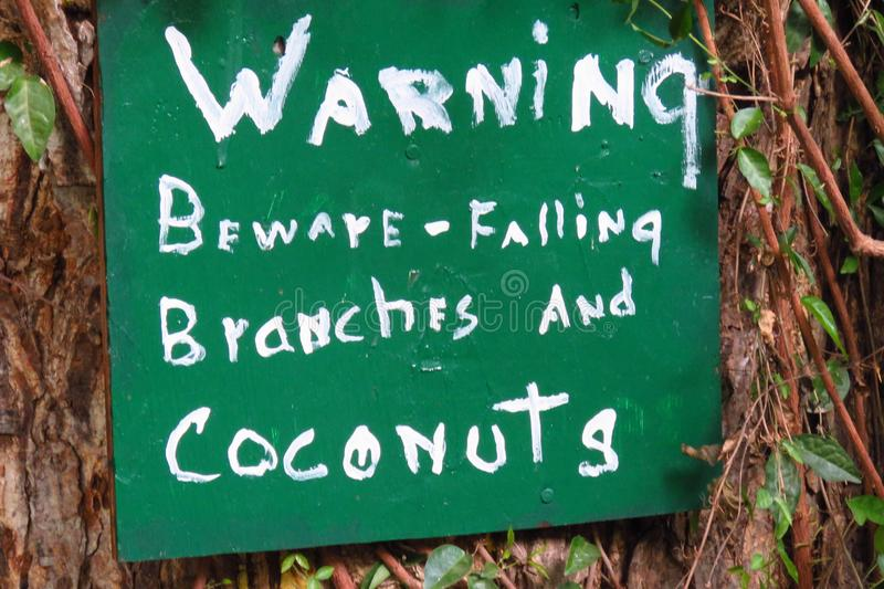 Warning falling branches and coconuts, hawaii. Warning sign beware of falling branches and coconuts, white letters painted on green sheet, hawaii stock photos