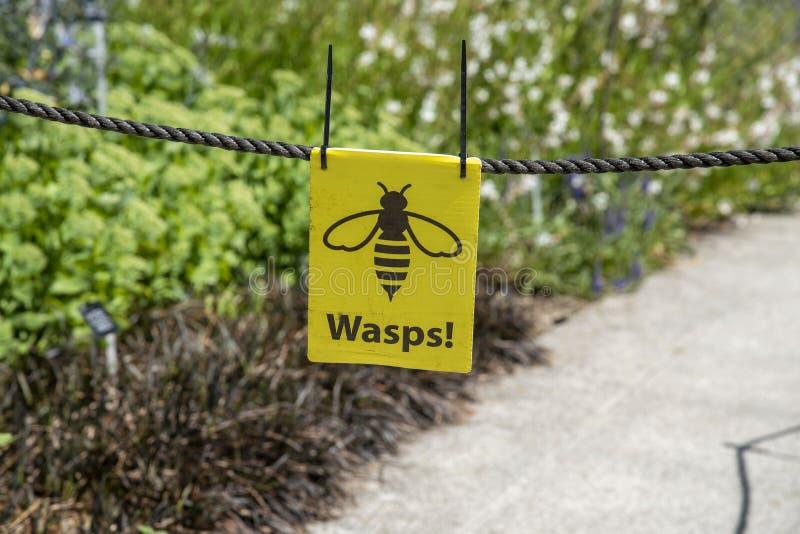 Warning notice of wasps flying around stock photography