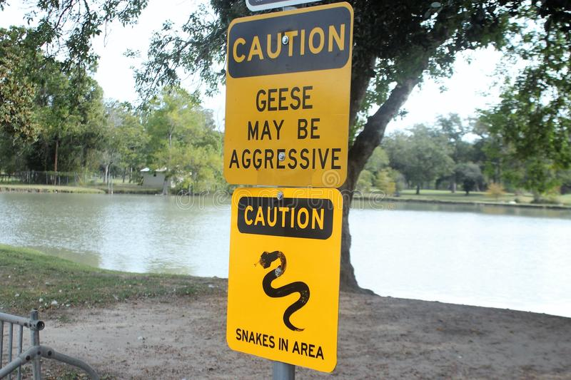 Warning Sign for Aggressive Geese and Snakes. This is a warning sign for aggressive geese and snakes royalty free stock photo