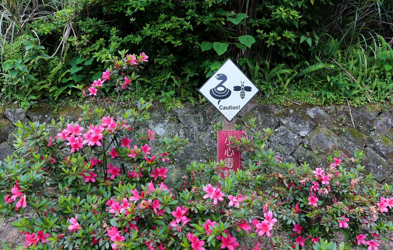 Warning sign be careful snake and insect. Warning sign `Caution: snakes and insect` in a Taipei. Warning sign in place there snakes live stock image