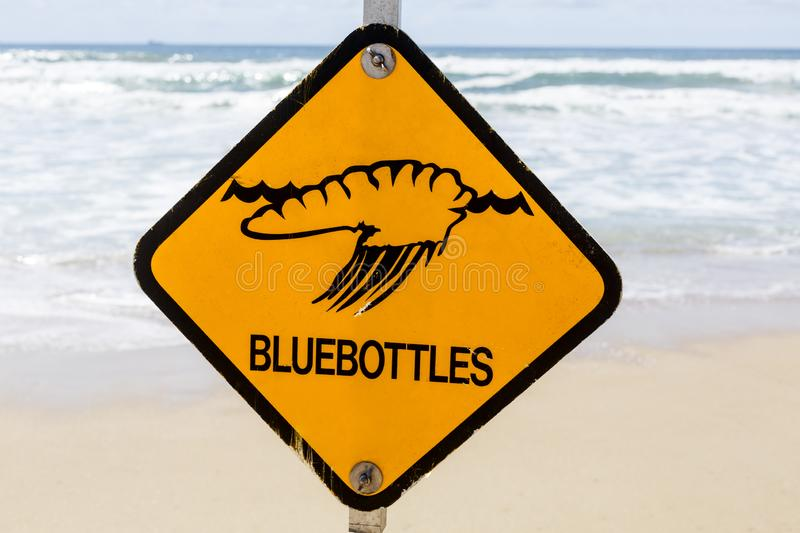 Warning Signs on the Beach. Bluebottles, or Portuguese Man-of-War, is one of the many warning signs on the beaches during summer in Queensland, Australia stock photography