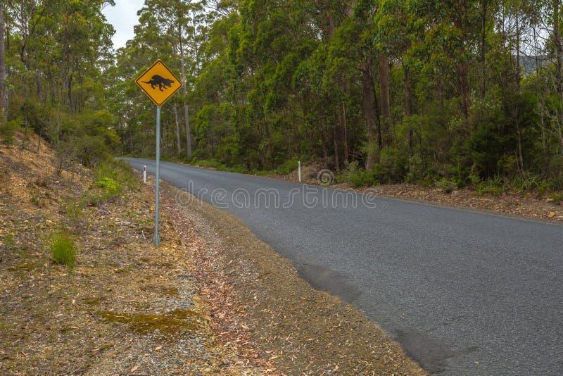 Warnung: Tasmanischer Teufel-Überfahrtzeichen stockbilder