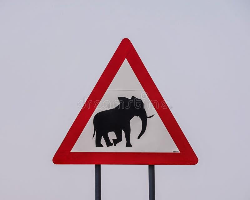 Warnzeichen des Elefanten lizenzfreie stockbilder