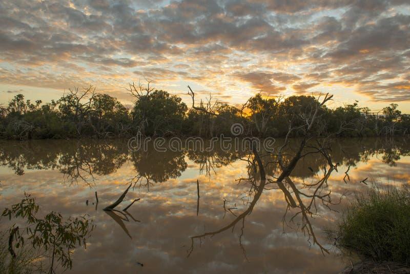 Warrego flod på Cunnamulla, Queensland, arkivfoto