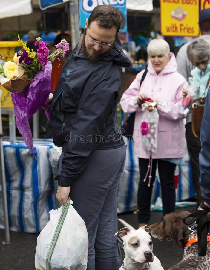 Warrenton, Virginia/USA-5/18/18: Uomo che esamina i cani in Città Vecchia Warrenton durante il festival di primavera fotografia stock libera da diritti
