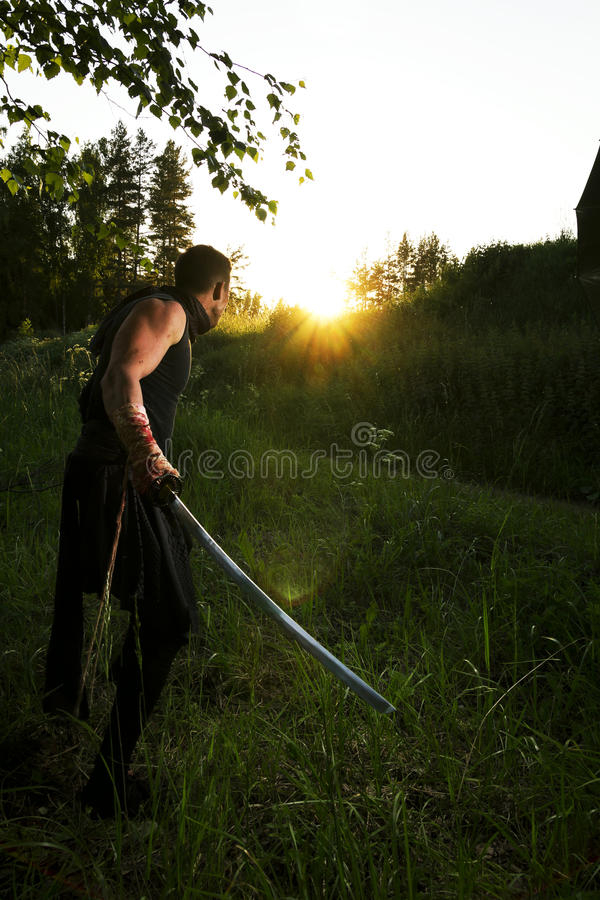 Warrior and sunset stock images