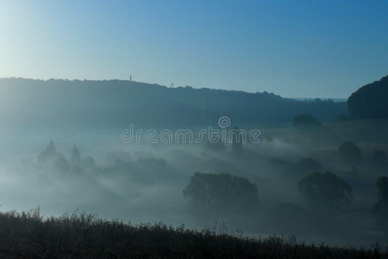 Warstwa mgła nad łąką z drzewami i trawą w Niemcy obrazy royalty free