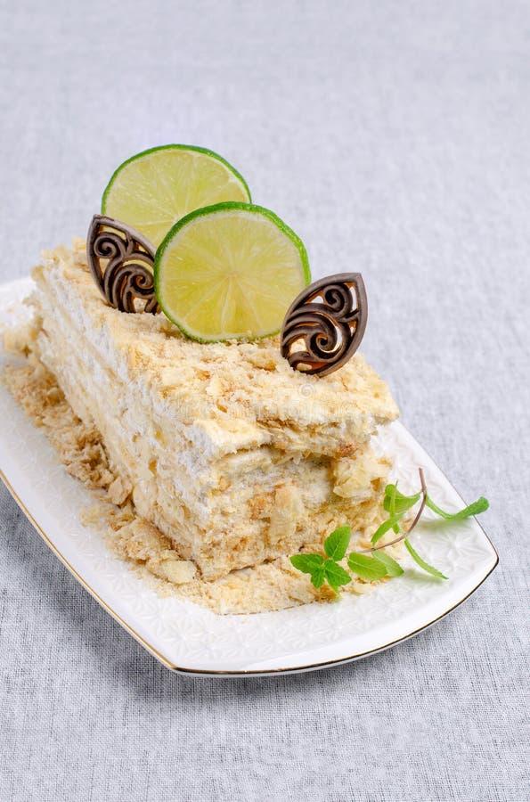 Warstwa tort Z Bia?? ?mietank? obrazy royalty free