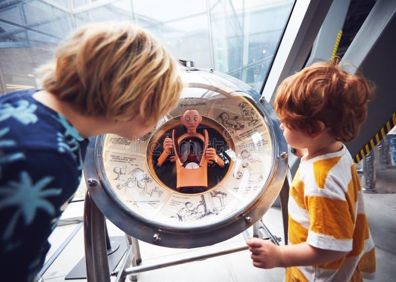 WARSZAWA POLSKA, Czerwiec, - 20, 2019: Dzieciaki badają wewnętrznego ciało ludzkie organów kuli ziemskiej modela w Copernicus nau zdjęcia royalty free
