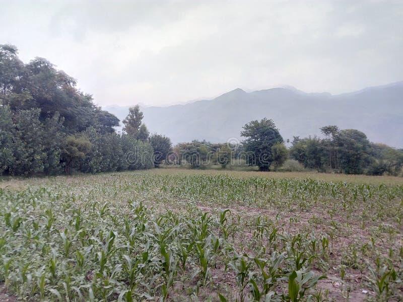 Wartair Distt Malakand Pakistan de village images stock