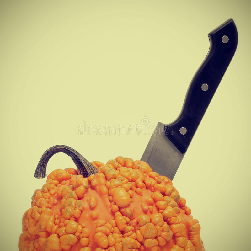 Free Warty Pumpkin With A Kitchen Knife In It Stock Image - 27268051