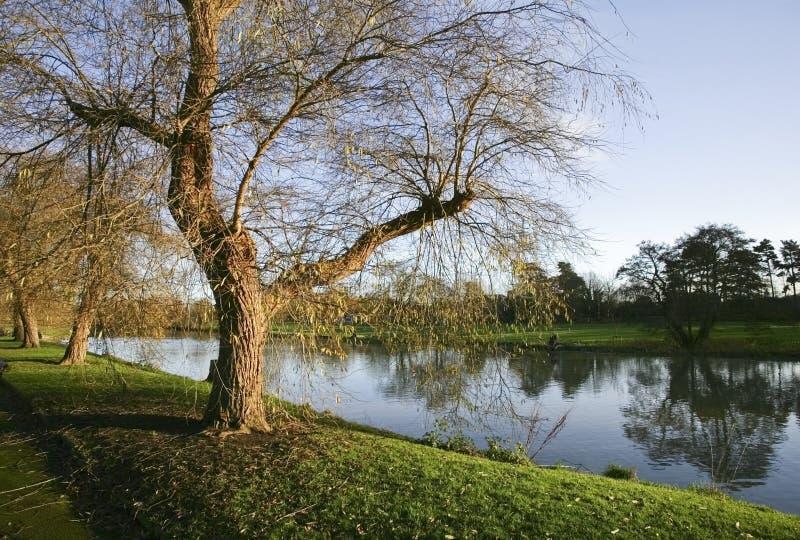 Warwick del avon del fiume fotografia stock