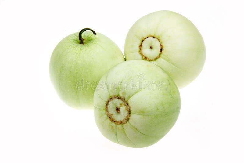 Warzenmelone stockfotos