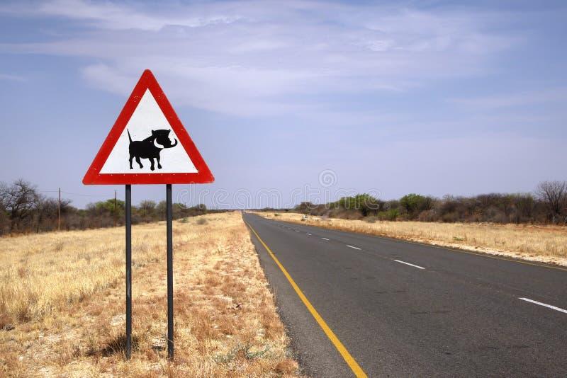 Warzenschweinüberfahrtzeichen auf namibischer Straße lizenzfreie stockfotografie