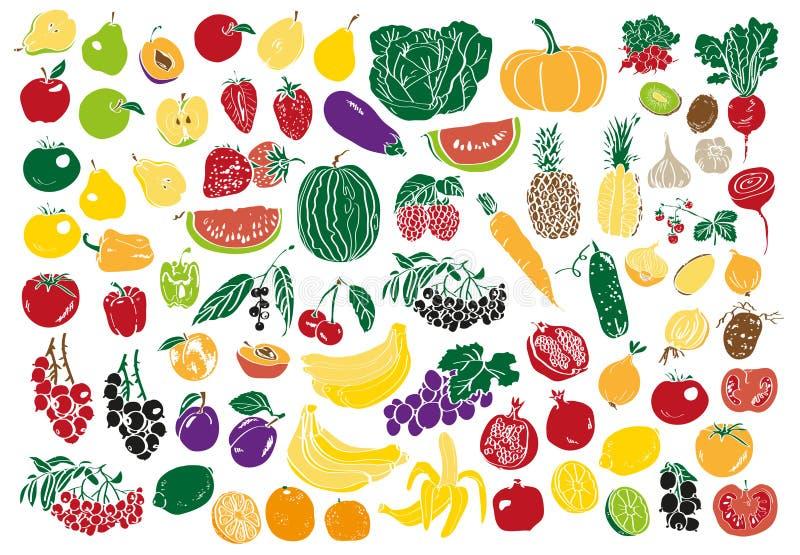 Warzyw i owoc kolor ilustracja wektor
