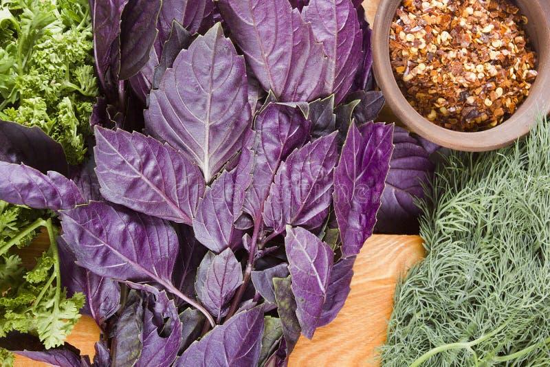 warzywa świeże zioła obraz royalty free