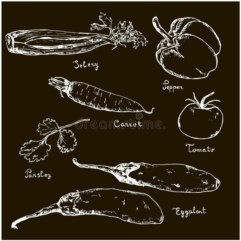 Warzywa biali na czarnej ręki rysującym atramencie kreślą ustaleni r??norodni warzywa Nakreślenia różny eco jedzenie Odizolowywaj ilustracja wektor