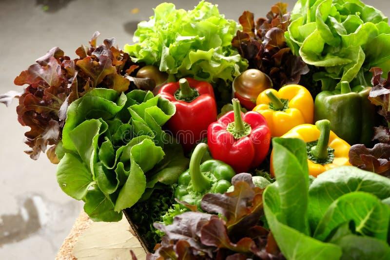 Download Warzywa i słodki pieprz obraz stock. Obraz złożonej z owoc - 65226453