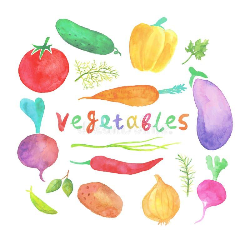 Warzywa, karmowa akwarela royalty ilustracja