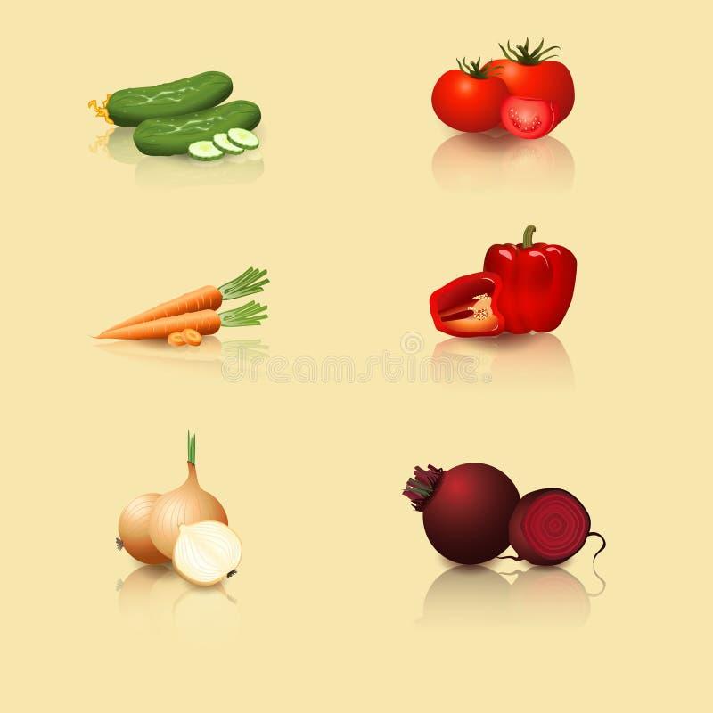Warzywa: pomidory, marchewki, pieprze, ogórek, cebula ilustracja wektor