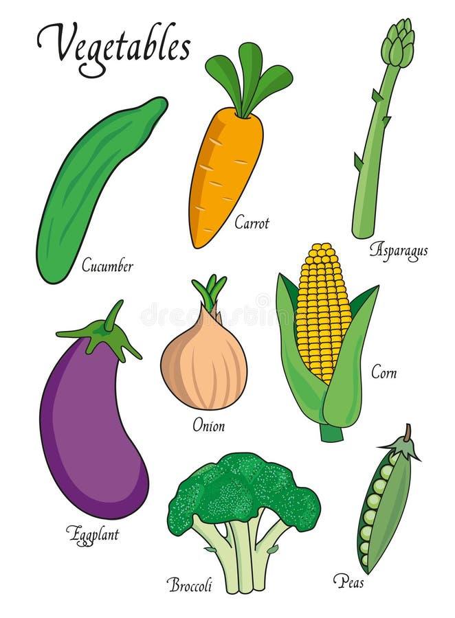 Warzywa ustawiający z ogórkiem, marchewka, asparagus, oberżyna, brokuły, cebula, grochy tła ilustracyjny rekinu wektoru biel ilustracji