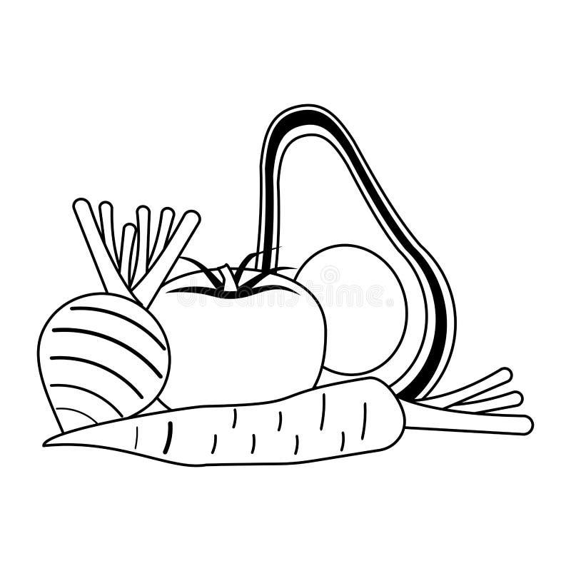 Warzywa zdrowi i świeża żywność w czarny i biały royalty ilustracja