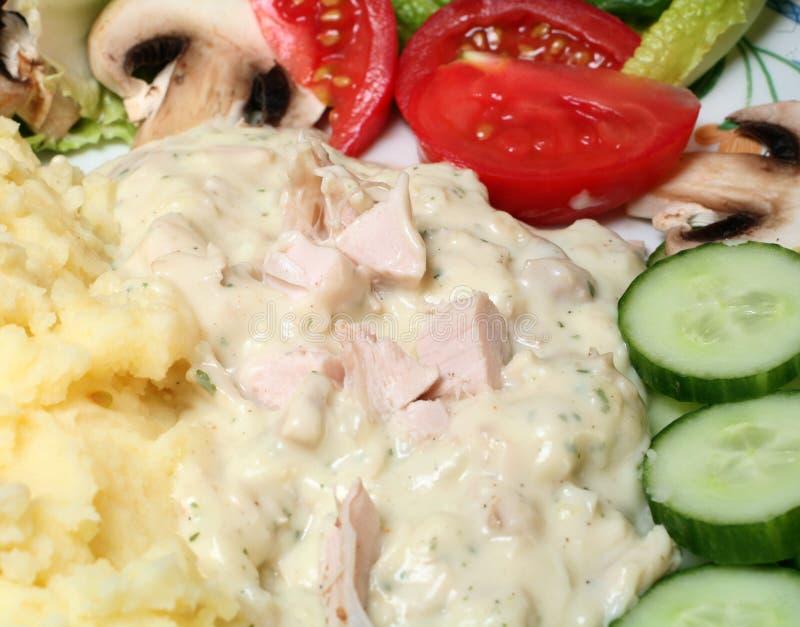 warzywne sałatki z kurczaka sosu obraz royalty free