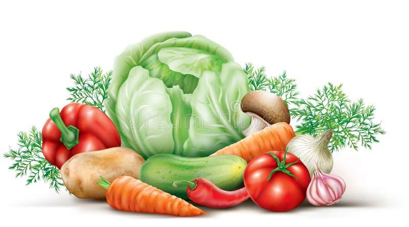 warzywo grupa