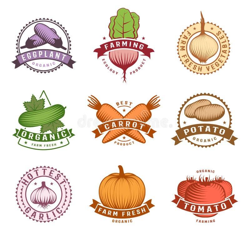 Warzywo Kolorowe etykietki Ustawiać ilustracja wektor